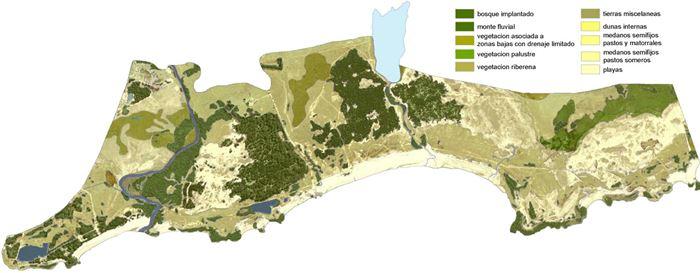 Hytecaltoamericas 5 6 agricultura e ind forestal for Plano de un vivero forestal
